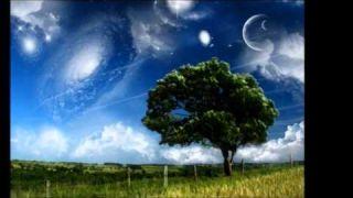 The Dream - David Sanborn - Alto Sax